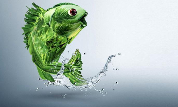 7-creative-pub-poisson