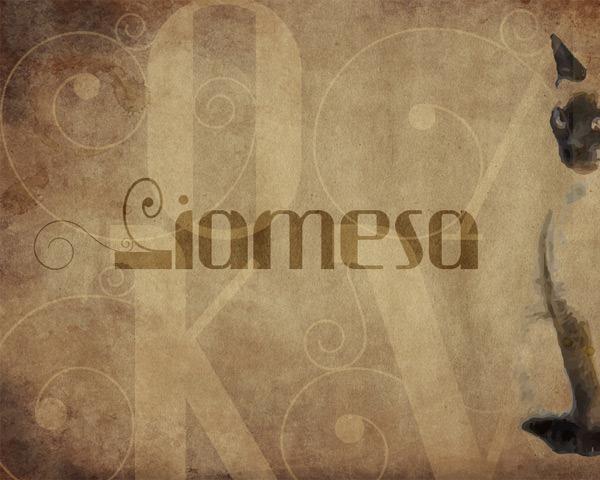 24-simiesea_thumb