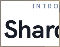 shards-pro_thumb